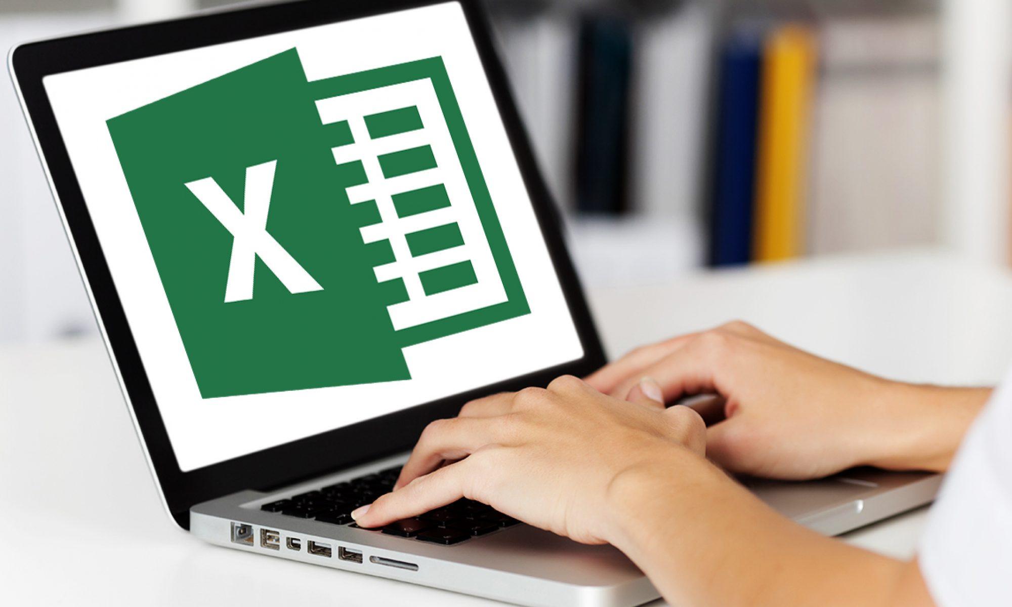 The Accounting & Excel Guru
